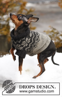 Leuke Truien Breien Voor De Hond Ouderwets Breien
